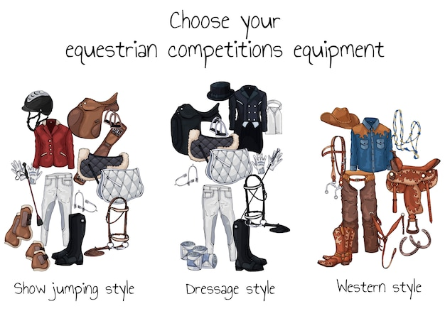 Vektor-pferdemunition und reiterausstattung Premium Vektoren