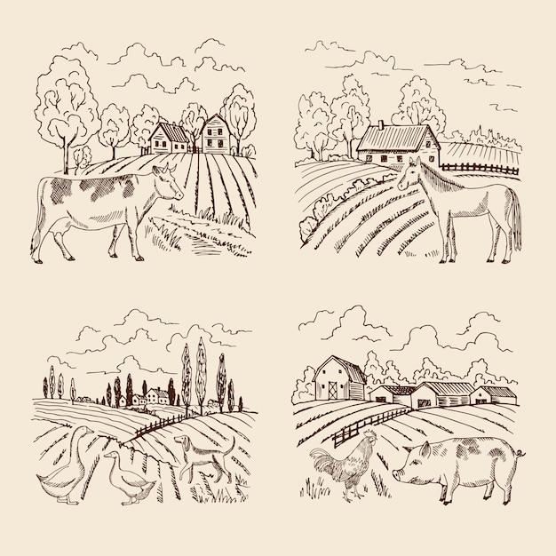 Vektordorf und großes feld. landschaft mit landwirtschaft und tieren. set für illustrationen in retro Premium Vektoren