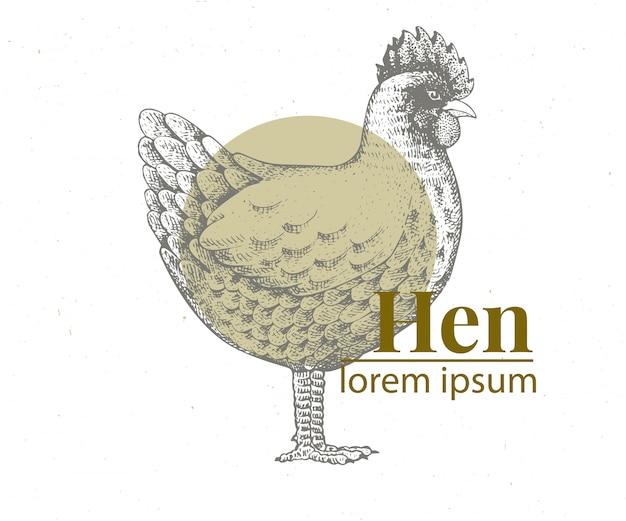Vektorhand gezeichnete hühnerillustration. Premium Vektoren