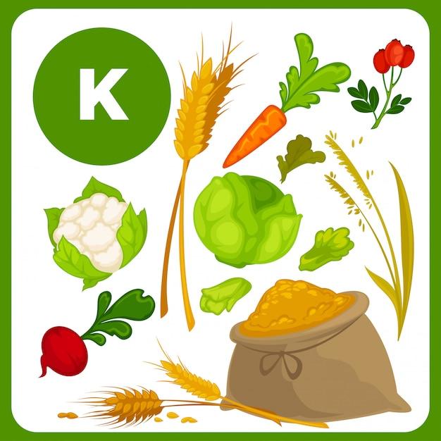 Vektorlebensmittel mit vitamin k. Premium Vektoren