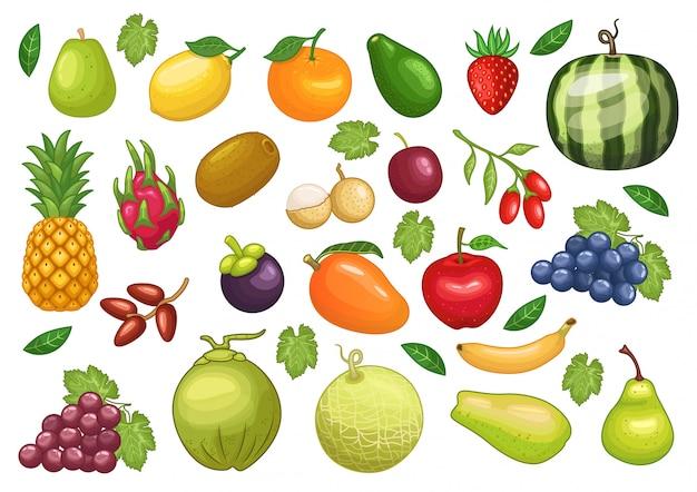 Vektorsatz auf lager der grafischen gegenstandillustration der früchte Premium Vektoren