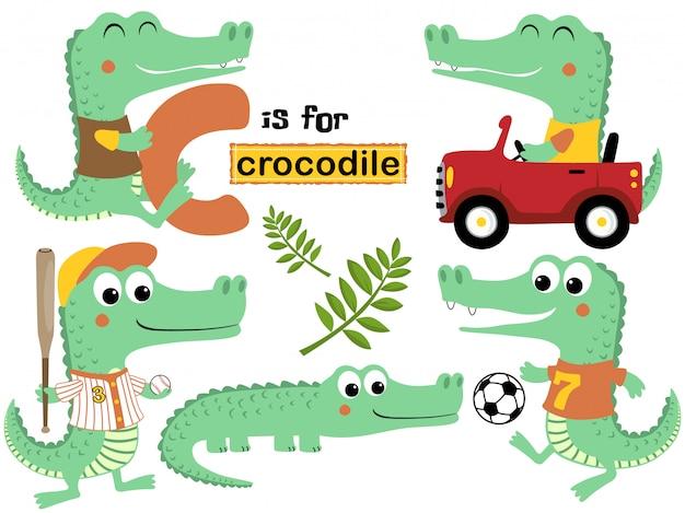 Vektorsatz der krokodilkarikatur mit verschiedener tätigkeit Premium Vektoren
