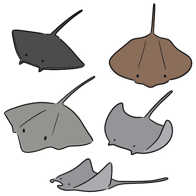 Vektorsatz von ray fish Premium Vektoren
