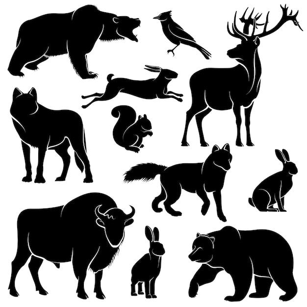 Vektorwaldtiere für hölzernes design. zoologie-sammlung Premium Vektoren