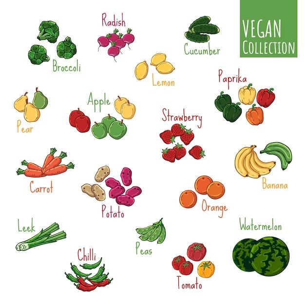 Verschiedene arten des vektors des frischgemüses und der früchte. Premium Vektoren