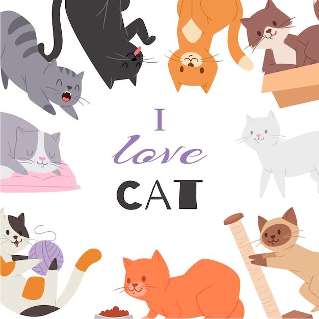 Verschiedene kätzchenzuchten, -spielwaren und -lebensmittel des niedlichen kittykatzenplakats. pussycats ich liebe katzentypographie. Premium Vektoren