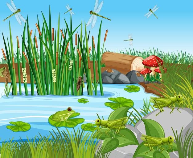 Viele grüne frösche und libellen in der teichszene Kostenlosen Vektoren