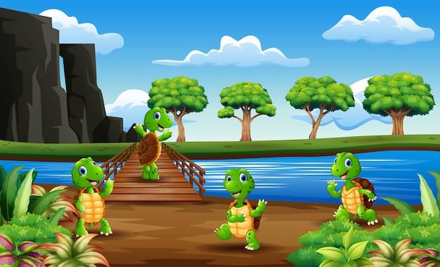 Viele schildkröten über die holzbrücke Premium Vektoren