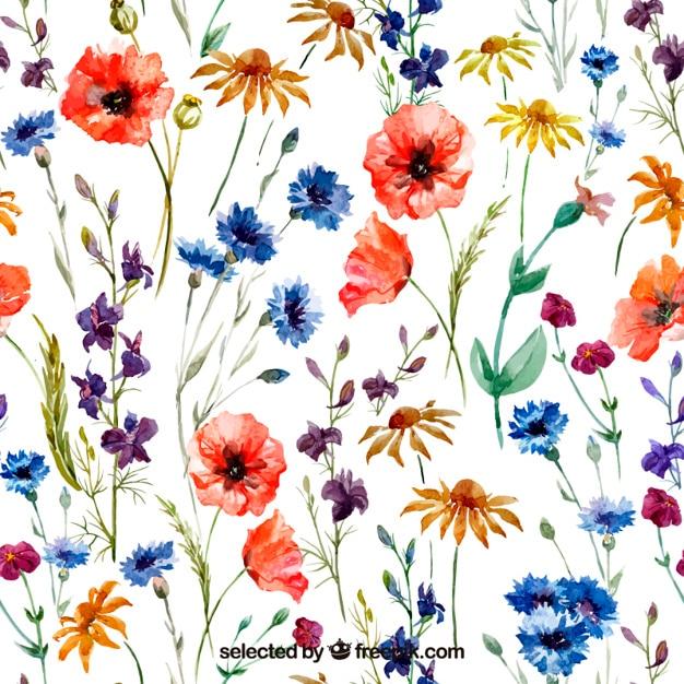 Vielfalt der Watercolor-Blumen Kostenlose Vektoren