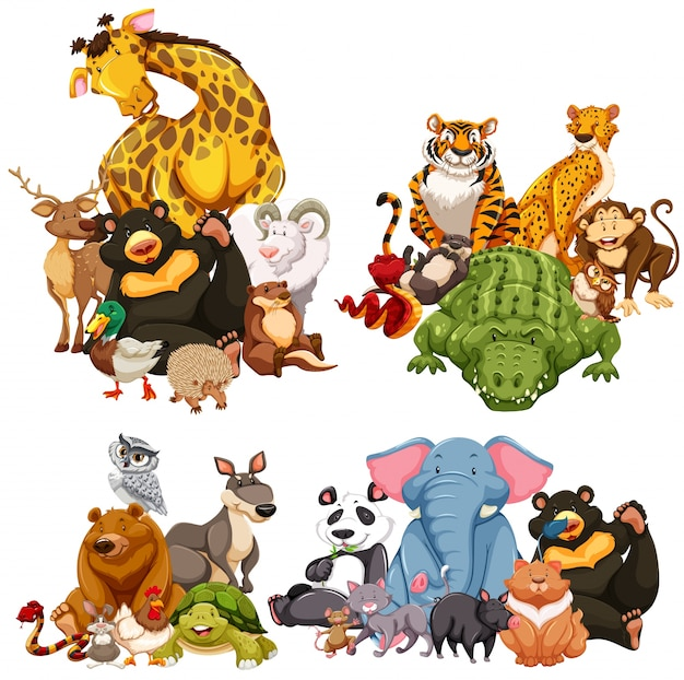 Vier gruppe von wilden tieren Premium Vektoren