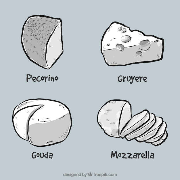 Vier leckere käse Kostenlosen Vektoren