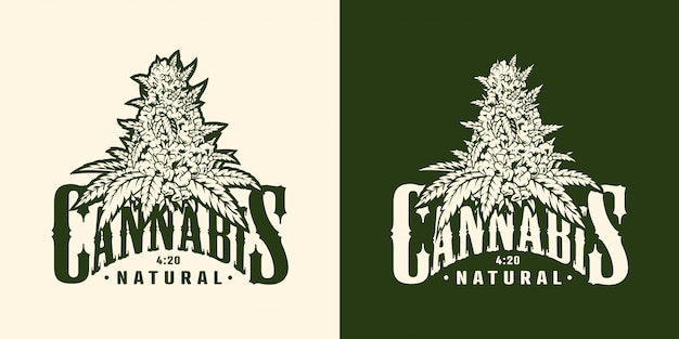 Vintage marihuana pflanzenetikett Kostenlosen Vektoren