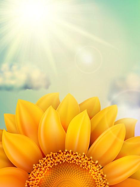 Vintage sommersonnenblume mit wolken. datei enthalten Premium Vektoren