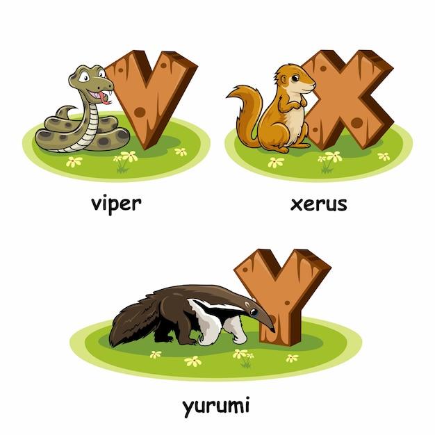 Viper xerus yurumi holz alphabet tiere Premium Vektoren