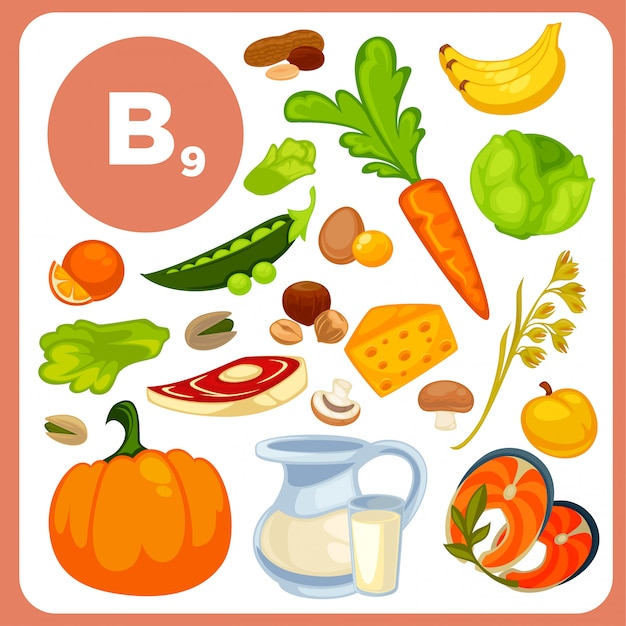 Vitamin b12, folsäurequellen. Premium Vektoren