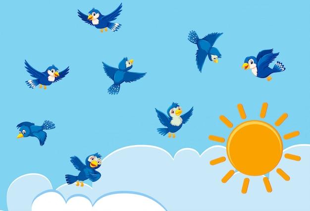 Vögel am himmel Premium Vektoren