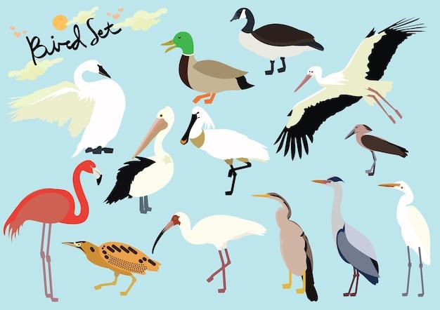 Vögel eingestellt Premium Vektoren