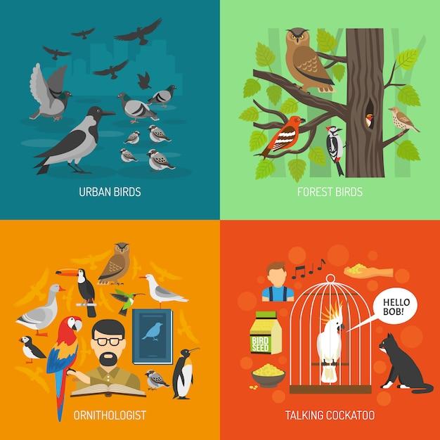 Vogel 2x2 bilder konzept Kostenlosen Vektoren
