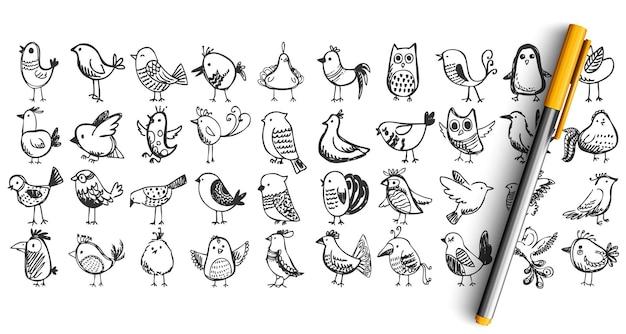 Vogel gekritzel set. sammlung bleistift feder tinte hand gezeichnete skizzen. fliegende tiere nachtigall eule baum sperling taube. Premium Vektoren