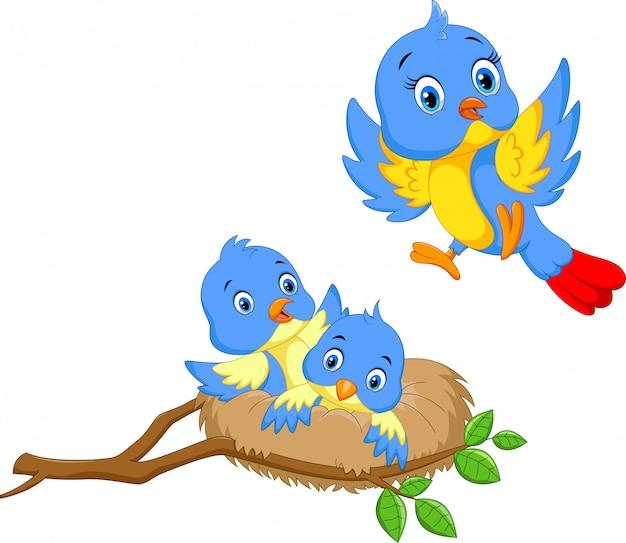 Vogel mit zwei jungen im nest Premium Vektoren