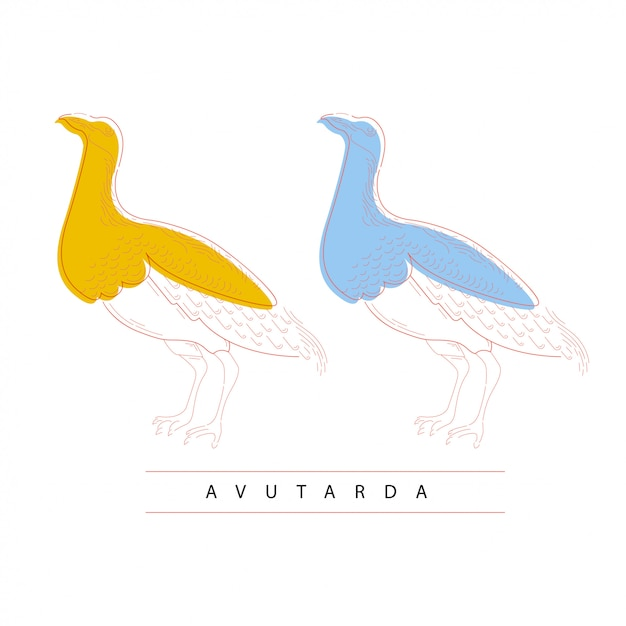 Vogel Premium Vektoren