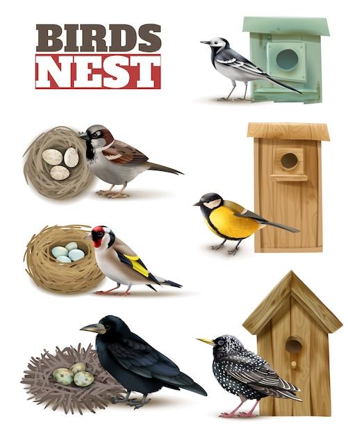 Vogelnest mit bearbeitbaren text und realistischen bildern von vögeln mit wilden nestern und vogelhäuschen gesetzt Kostenlosen Vektoren
