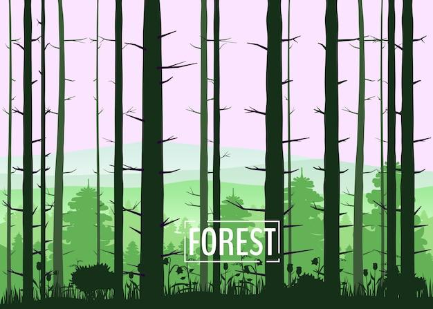 Wald, silhouetten, bäume, kiefer, tanne, natur, umwelt, horizont, panorama Premium Vektoren