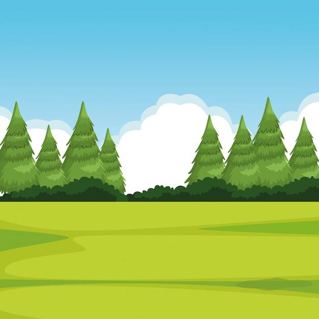 Waldlandschaft mit kiefer Kostenlosen Vektoren