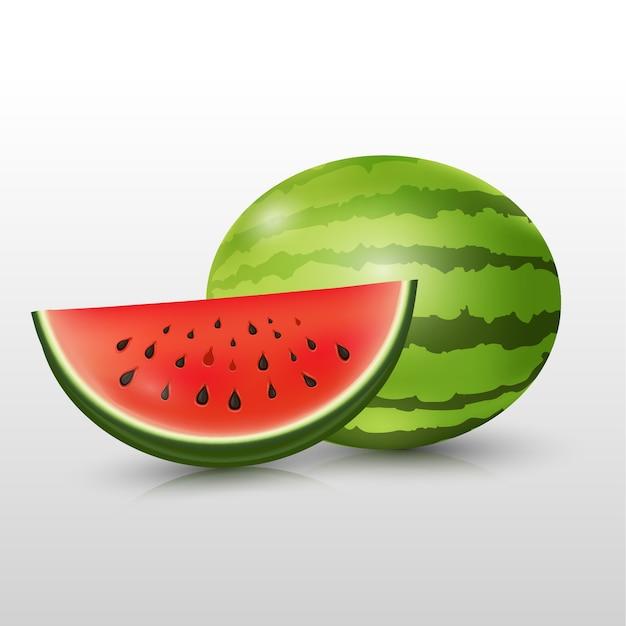 Wassermelonenscheiben-sommerfrucht. Premium Vektoren