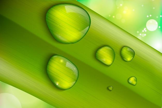 Wassertropfen auf frischem grünem gras realistisch Premium Vektoren