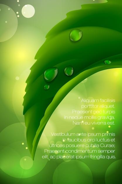 Wassertropfen auf realistische illustration des frischen grünen grases Premium Vektoren
