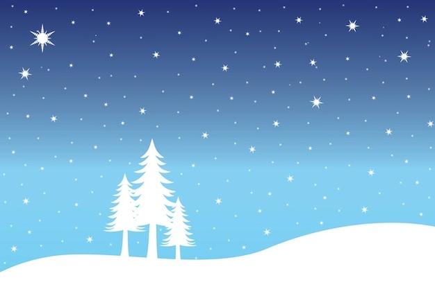 Winterpark Web Design