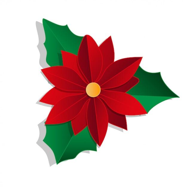 Weihnachtsblume getrennt auf weiß Premium Vektoren