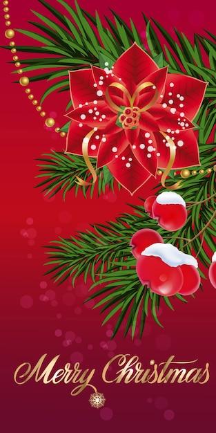 Weihnachtsgrußkarte mit Weihnachtsstern   Download der kostenlosen ...
