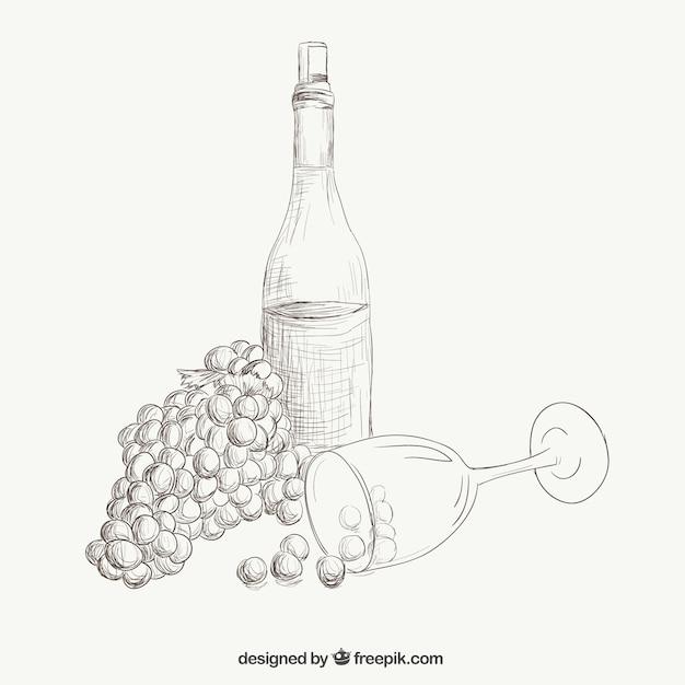 Wein und Trauben Abbildung | Download der kostenlosen Vektor