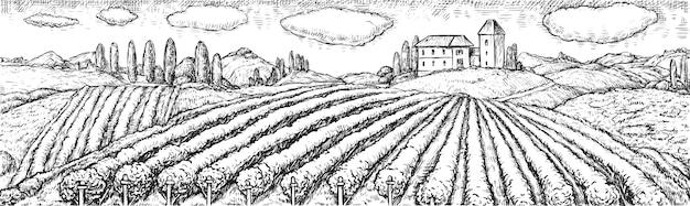 Weinbergfeld. ländliche szene mit weingut plantage auf hügel und haus ranch hand gezeichnete gravur skizze. agrarlandschaft mit bebautem feld. weinberg- und weinbauillustration Premium Vektoren