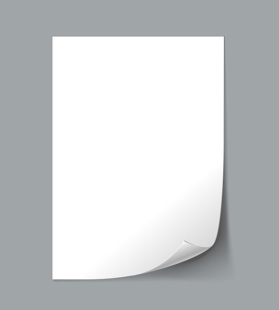Weiß leeres papierblatt mit locke Kostenlosen Vektoren