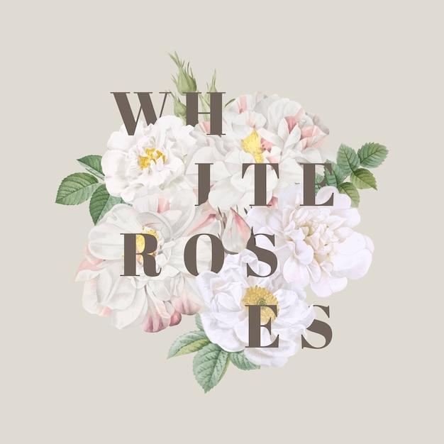 Weiße rosen hintergrunddesign Kostenlosen Vektoren