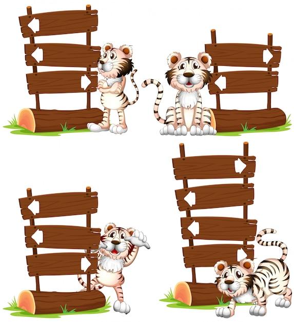 Weißer tiger mit holzschildern Kostenlosen Vektoren