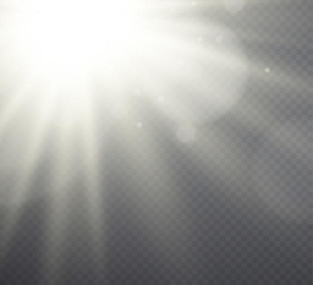 Weißes lichteffektsonnenlicht, strahlen auf transparentem Premium Vektoren