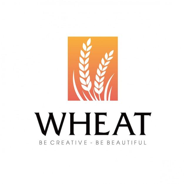 Weizen landwirtschaft logo Premium Vektoren