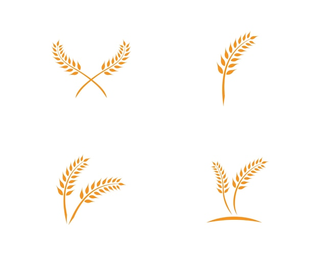 Weizen logo vorlage Premium Vektoren