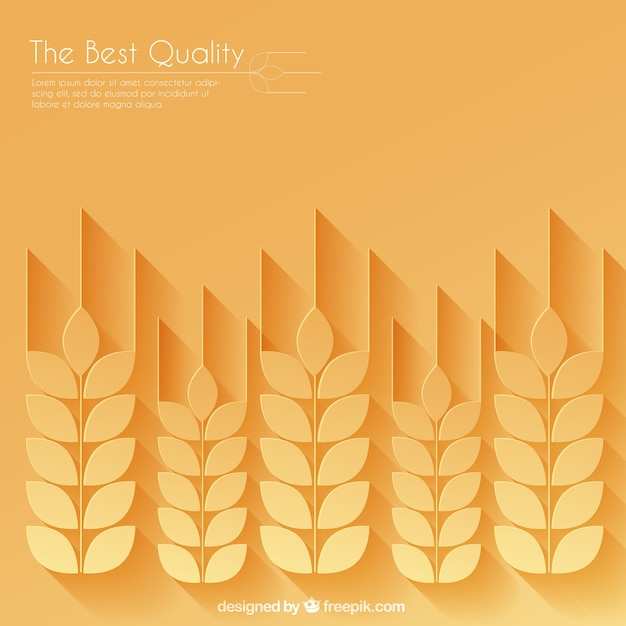 Weizen ohren hintergrund Premium Vektoren