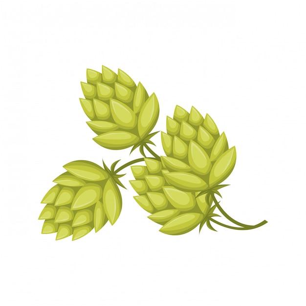 Weizenblätter und pinecone lokalisierten ikone Premium Vektoren