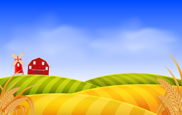 Weizenfeld landschaft Premium Vektoren