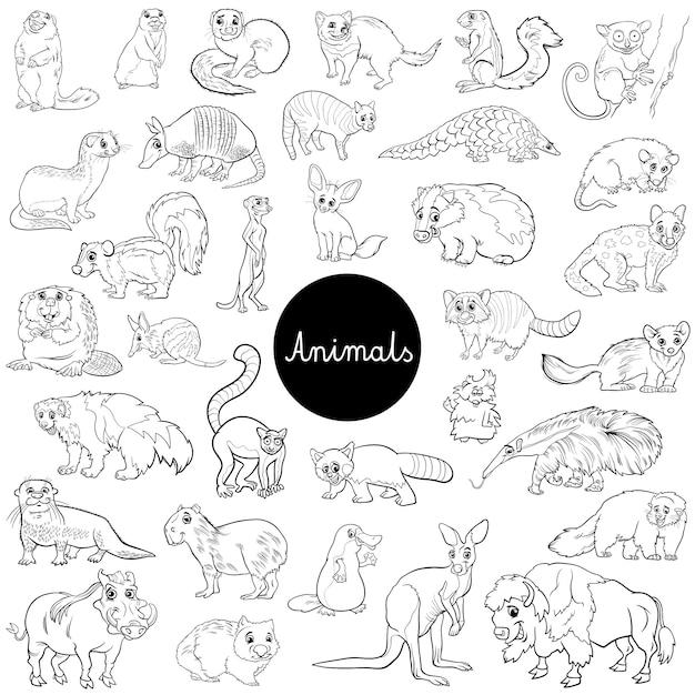 Wilde Säugetiere Tier Zeichen setzen Farbbuch | Download der Premium ...