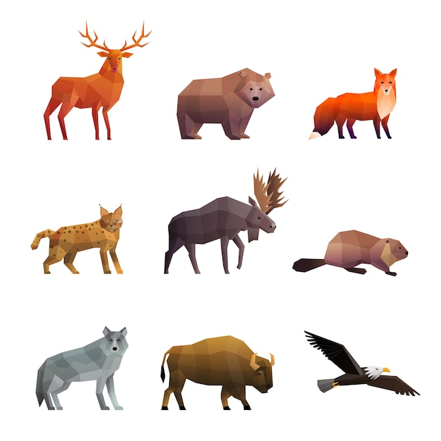 Wilde tier-polygonalikonen eingestellt Kostenlosen Vektoren