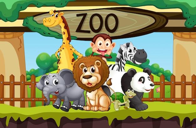 Wilde tiere im zoo Premium Vektoren