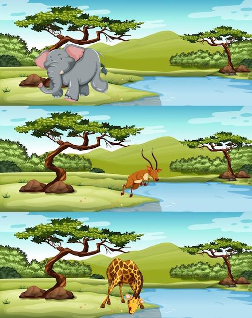 Wilde tiere leben am see illustration Kostenlosen Vektoren
