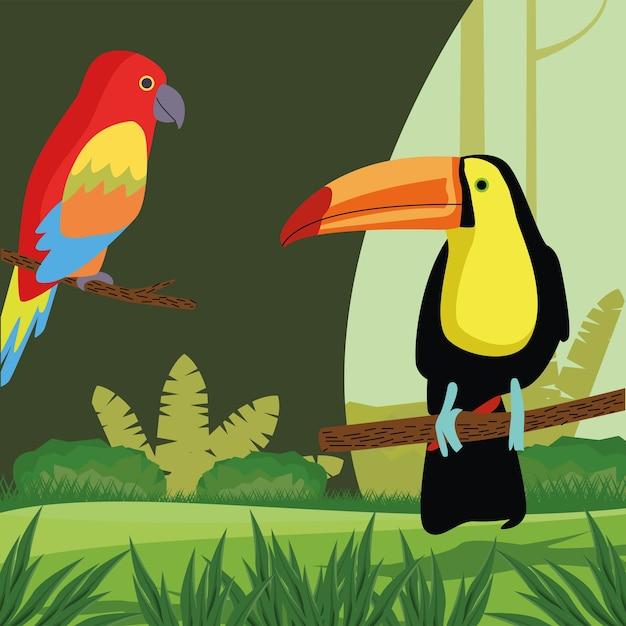 Wilde tropische papageien- und tukanvogelnaturikone Premium Vektoren